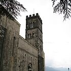 Barga, Italy church by Stephanie  Wiese