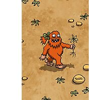 Handsome Yowie has a Flower Photographic Print