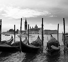 Venezia by Gonçalo Catarino