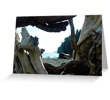 I Came From Out There Greeting Card