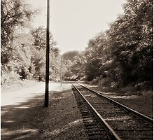 Lonely Rail by LocustFurnace