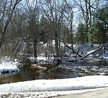 Beaver River at Old School House Road © 2009 by Jack McCabe