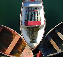 Row boats by Ciara(Kevin & Paula) Neupert