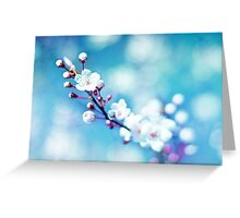 A taste of spring Greeting Card