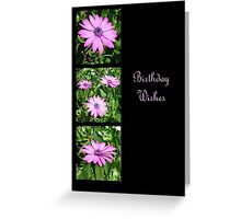 Birthday Wishes Greeting Card with Pink Daisies Greeting Card