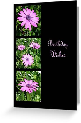 Birthday Wishes Greeting Card with Pink Daisies by taiche