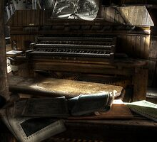 Organ In Disarray by Richard Shepherd