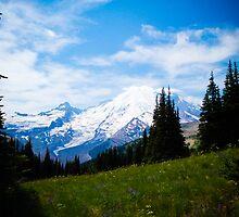 Mt. Rainier by Tim Cowley