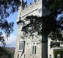 Glenveagh National Park`s Castle by blue-eyes