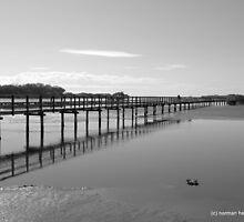The Boardwalk Again by Norman Heywood