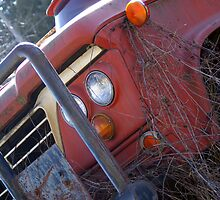 old dodge truck by Shawnna Taylor