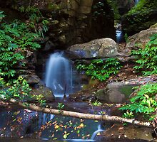 Cascade by Ken Boxsell