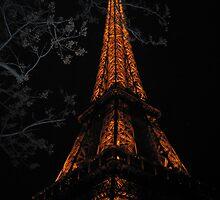 Eiffel Tower at night by allthatjazz