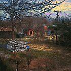 Backyard Busyness by Deborah Dillehay