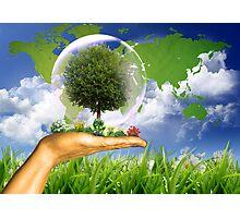 Ecologie Photographic Print