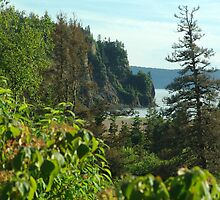 Parrsboro Shore by George Cousins