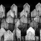 Fence  by marshall calvert  IPA