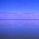 Lake Eyre under water by auscape