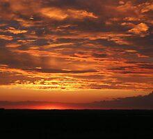 Prairie sunset by tanmari