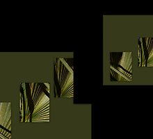 Collage of a Palmetto Palm tree frond.. by Isa Rodriguez