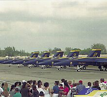 Blue Angels by Donna Adamski