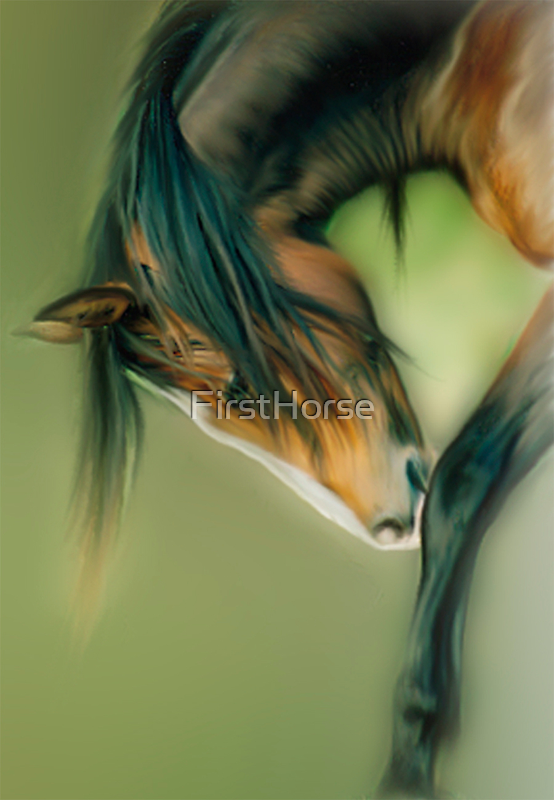 The Wild Mare by FirstHorse