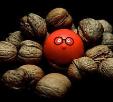 """Go A Little Nuts For Comic Relief"" by Bradley Shawn  Rabon"