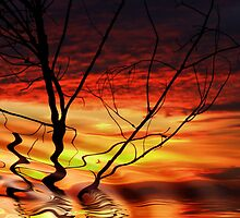 """""""Morning Abstract"""" by debsphotos"""