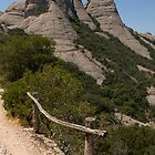 Monserrat Safety Rail by Michael Fotheringham Portraits