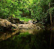Stony Creek in Cairns, Queensland by groophics