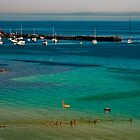 Looking down at Mornington Pier by dragongizmo