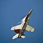 FA-18  SUPER  HORNET by aircraft-photos
