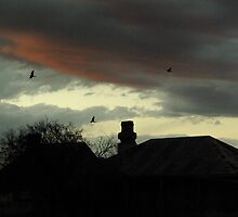 Coming Home To Roost by retsilla