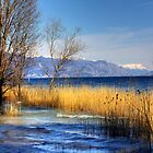 Garda's lake view by becks78