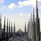 The Roof of the Duomo of Milano by sstarlightss