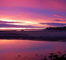 Pink Dawn by Blackgull