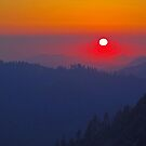 Sierra Foothills, California by Tamas Bakos