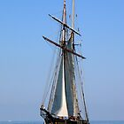 Chesapeake Bay Sailing by Timothy Gass