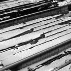 Train tracks by Manuel Gonçalves