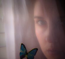 Butterflies and Me by Jenny Ryan