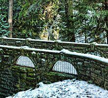 Whatcom Falls Bridge by Appel