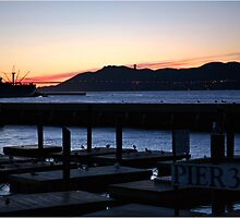 Goodnight San Francisco by Laura Ashburn