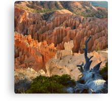 Bryce Canyon Sunrise Colors Canvas Print