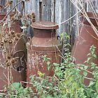 Rusty Churns by Sandra Mangnall