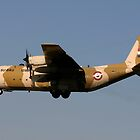 Egyptian C-130 by ScottH711