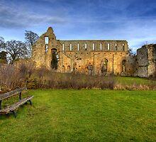 Jervaulx Abbey by Stewart Laker