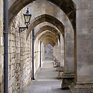 Arcade of modern flying buttresses, Winchester Cathedral, southern England by Philip Mitchell