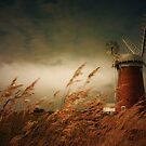 Horsey Mill, Norfolk by Ian Flindt