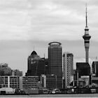 Auckland Panorama by Mike Rowley