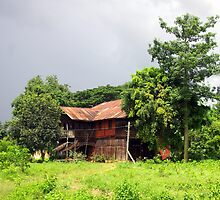 George Orwell's home in Katha, Burma by John Mitchell